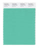 Pantone SMART Color Swatch 15-5819 TCX Spearmint