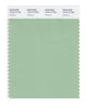 Pantone SMART Color Swatch 15-6114 TCX Hemlock