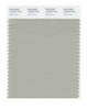 Pantone SMART Color Swatch 15-6307 TCX Agate Gray
