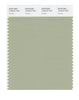 Pantone SMART Color Swatch 15-6310 TCX Swamp