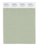 Pantone SMART Color Swatch 15-6313 TCX Laurel Green