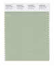 Pantone SMART Color Swatch 15-6315 TCX Smoke Green