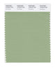 Pantone SMART Color Swatch 15-6316 TCX Fair Green