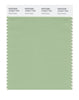 Pantone SMART Color Swatch 15-6317 TCX Quiet Green