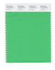 Pantone SMART Color Swatch 15-6340 TCX Irish Green