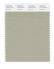 Pantone SMART Color Swatch 15-6410 TCX Moss Gray