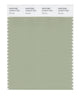 Pantone SMART Color Swatch 15-6414 TCX Reseda