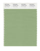 Pantone SMART Color Swatch 15-6423 TCX Forest Shade