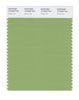 Pantone SMART Color Swatch 15-6428 TCX Green Tea