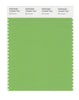 Pantone SMART Color Swatch 15-6442 TCX Bud Green