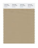 Pantone SMART Color Swatch 15-1114 TCX Travertine