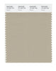 Pantone SMART Color Swatch 15-1304 TCX Humus