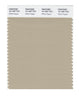 Pantone SMART Color Swatch 15-1307 TCX White Pepper