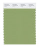 Pantone SMART Color Swatch 16-0123 TCX Tendril