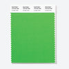 Pantone Polyester Swatch Card 16-0163 TSX Lounge Lizard