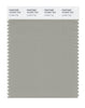 Pantone SMART Color Swatch 16-0207 TCX London Fog