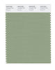 Pantone SMART Color Swatch 16-0220 TCX Mistletoe
