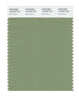 Pantone SMART Color Swatch 16-0224 TCX Green Eyes