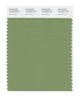 Pantone SMART Color Swatch 16-0228 TCX Jade Green