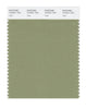 Pantone SMART Color Swatch 16-0421 TCX Sage