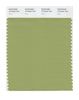 Pantone SMART Color Swatch 16-0430 TCX Fern