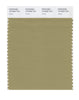 Pantone SMART Color Swatch 16-0526 TCX Cedar