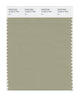 Pantone SMART Color Swatch 16-0613 TCX Elm