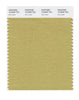 Pantone SMART Color Swatch 16-0836 TCX Rich Gold