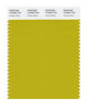 Pantone SMART Color Swatch 16-0840 TCX Antique Moss