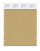 Pantone SMART Color Swatch 16-0928 TCX Curry