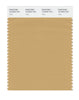 Pantone SMART Color Swatch 16-0940 TCX Taffy