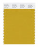 Pantone SMART Color Swatch 16-0953 TCX Tawny Olive