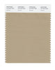Pantone SMART Color Swatch 16-1010 TCX Incense