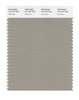 Pantone SMART Color Swatch 16-1107 TCX Aluminum