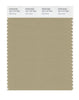 Pantone SMART Color Swatch 16-1110 TCX Olive Gray