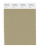 Pantone SMART Color Swatch 16-1118 TCX Sponge