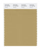 Pantone SMART Color Swatch 16-1126 TCX Antelope