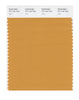 Pantone SMART Color Swatch 16-1140 TCX Yam