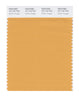 Pantone SMART Color Swatch 16-1142 TCX Golden Nugget
