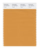 Pantone SMART Color Swatch 16-1148 TCX Nugget