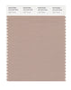 Pantone SMART Color Swatch 16-1210 TCX Light Taupe