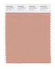 Pantone SMART Color Swatch Card 16-1220 TCX CafŽ Cr�me