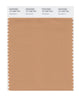 Pantone SMART Color Swatch 16-1235 TCX Sandstorm