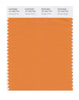 Pantone SMART Color Swatch 16-1253 TCX Orange Ochre