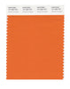 Pantone SMART Color Swatch 16-1260 TCX Harvest Pumpkin
