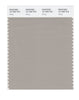 Pantone SMART Color Swatch 16-1305 TCX String