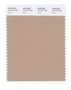 Pantone SMART Color Swatch 16-1317 TCX Brush