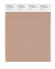 Pantone SMART Color Swatch 16-1320 TCX Nougat