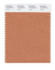 Pantone SMART Color Swatch 16-1325 TCX Copper