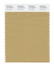 Pantone SMART Color Swatch 16-1326 TCX Prairie Sand